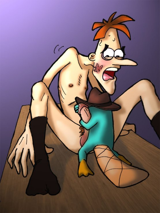 ferb platypus nude phineas and If it's a severed head gif